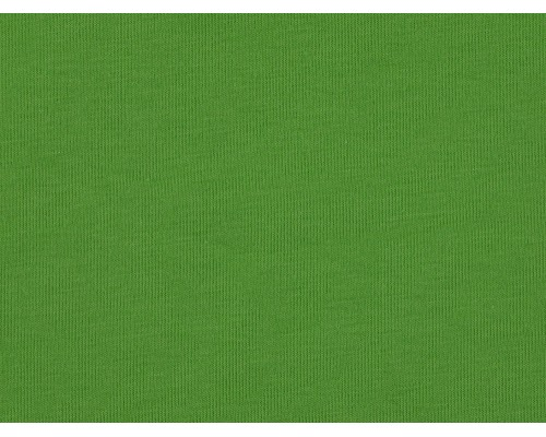 Single Jersey Fabric - Light Green