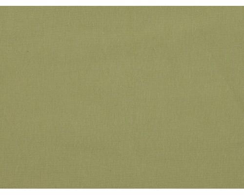 Single Jersey Fabric - Citrus